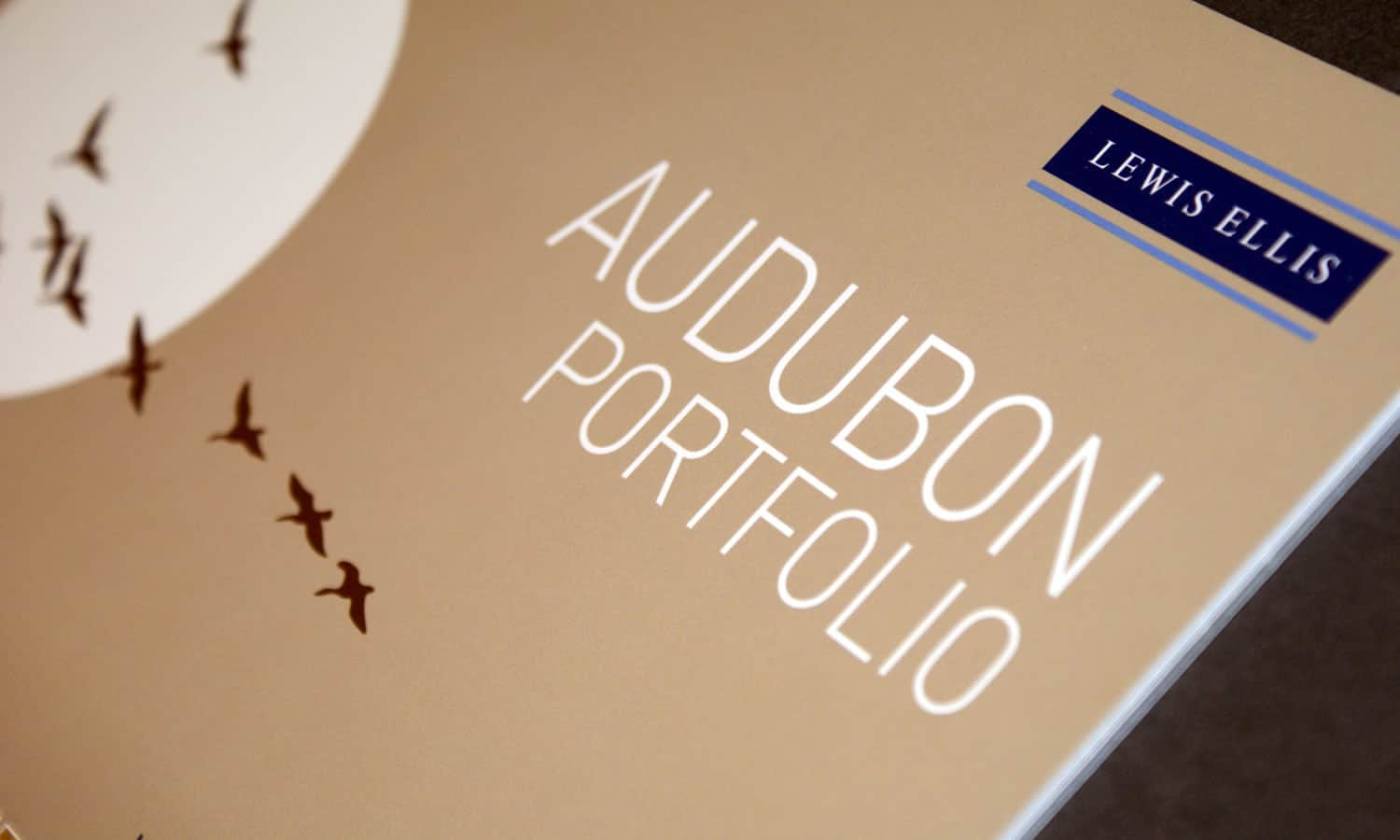 The Audabon Portfolio